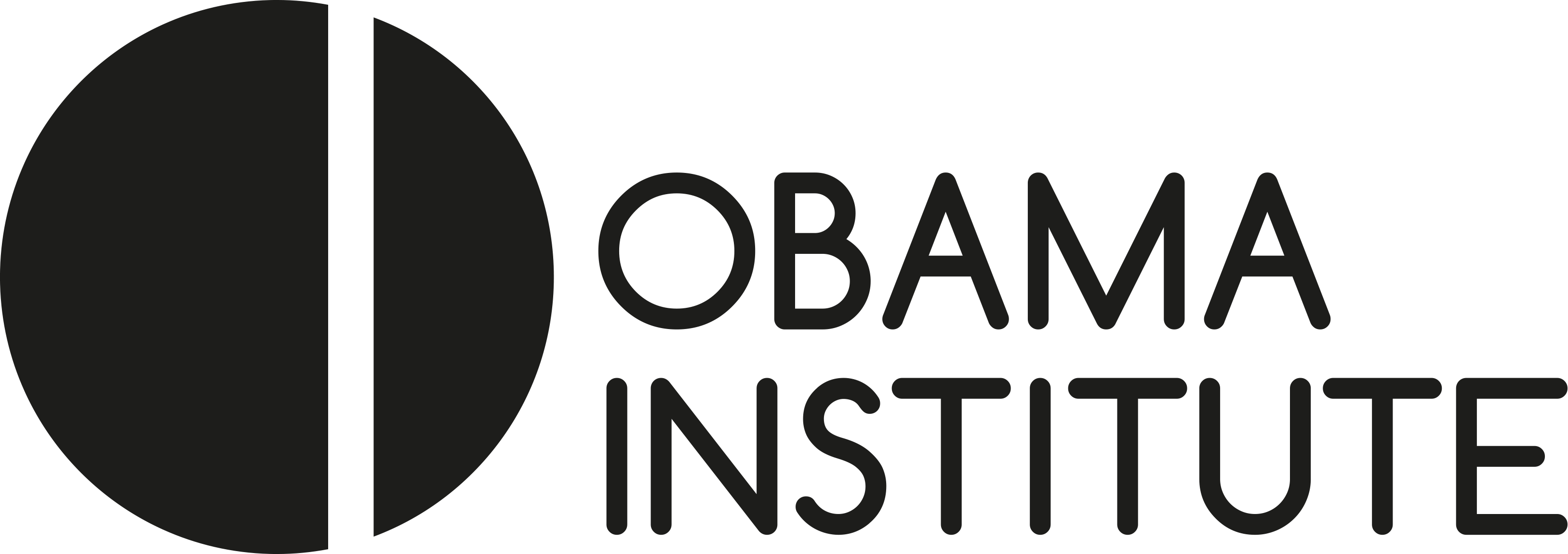 Obama Institute for Transnational American Studies